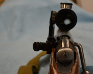 Going with the side mount allows you to still use you iron sights.